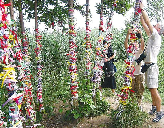 зачем привязывают ленточки к деревьям Прокат сортовой